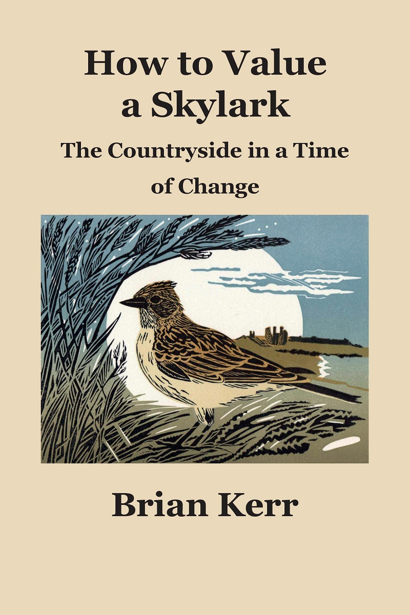 How to Value a Skylark - Brian Kerr - ISBN:978-1-8381562-1-1